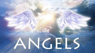Angels! (Tratto dalla storia degli angeli)