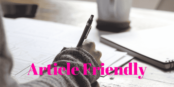 Article Friendly - Come fare SEO su WordPress