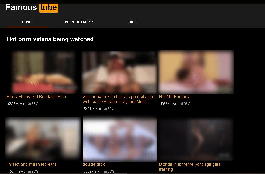 Website Porn Famous Tube - Come fare soldi da casa con un sito porno