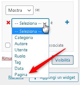 Pagina - Come nascondere i Widget del sito
